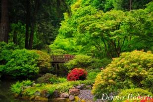 Bridge at the Japanese Garden