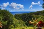 Hawaii-Maui-34