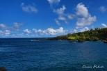 Hawaii-Maui-48