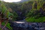 Hawaii-Maui-57